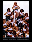 Miami Dolphins CHEERGROUP2