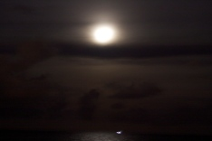 Moonlight_florida_full_moon
