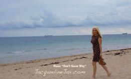 Blondi Beach Jacqueline Jax Florida_logo